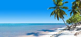 Wit strand met palmbomen en zee