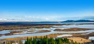 Moerasgebieden in de natuur van IJsland