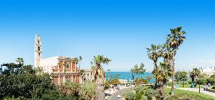 Traditioneel huis omringd door palmbomen en de zee in Israël