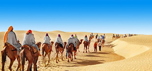 Woestijn met kamelen en blauwe lucht