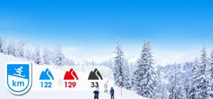 Skigebied Wilderkaiser Brixenthal met besneeuwde bomen