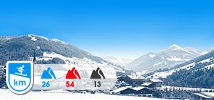 Skigebied Juwel Alpbachtal met besneeuwde bergen