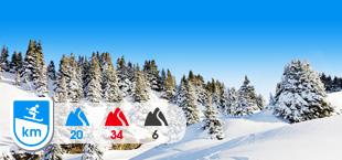 Skipiste en besneeuwde bomen in Meiringen Hasliberg Zwitserland