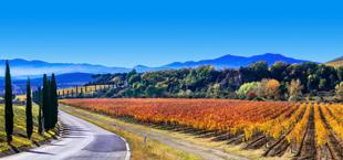 Schitterend wijnlandschap in Toscane Italië