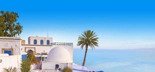 Witte huisjes aan zee aan de kust van Tunesië