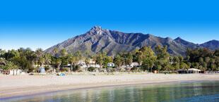 Strand met bos voor de bergen aan de Costa del Sol