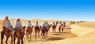 Woestijn met kamelen en blauwe lucht in Marokko