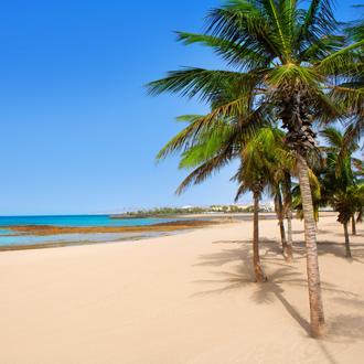 Arrecife Lanzarote Playa Reducto strand met tropische palmbomen op de Canarische Eilanden