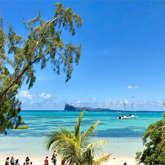 Uitzicht vanuit het strand over de blauwe zee met palmbomen