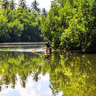 Bentota rivier met een vissersbootje in de jungle