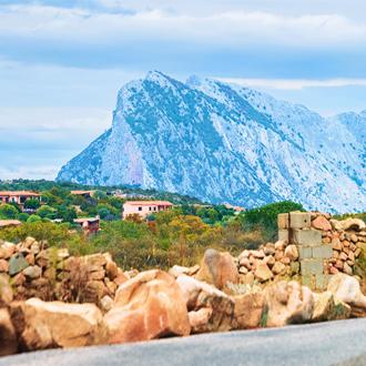 Grote berg met groen landschap in Olbia