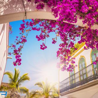 Huis met bloemen Puerto de Mogan