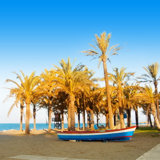 Strand met bootjes en palmbomen in Torremolinos, Spanje