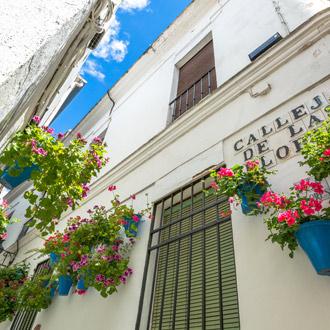 Calleja de las Flores in Córdoba, Spanje