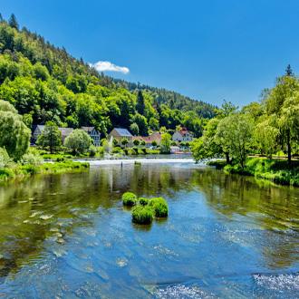 Dam in het water van Thüringer Woud in Duitsland
