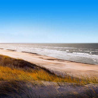Duinen in Denemarken