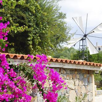 Huis met windmolen in Sissi