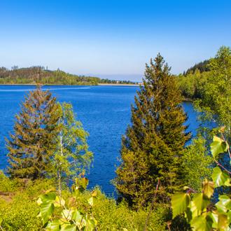 Groen landschap met meer in Harz, Nedersaksen, Duitsland