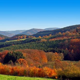 Beboste bergen in de herfst in Sauerland