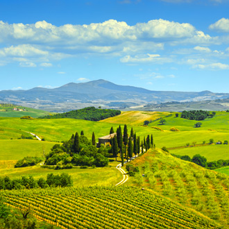 Landschap met cipressen in Toscane, Italie