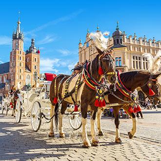 Koets met paarden in Polen