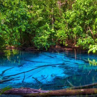 Natuurreservaat in het zuiden van Thailand