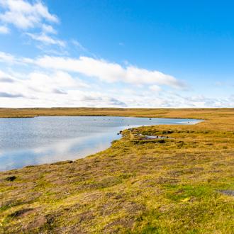 Leirvogsvatn bij Reykjavik, IJsland