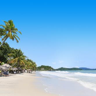 Het strand met palmbomen