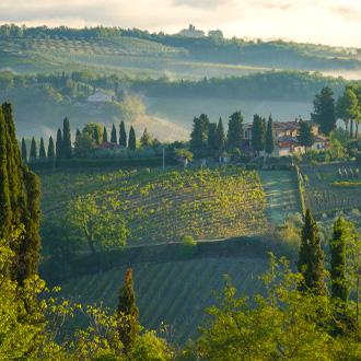 Mist in de bergen rondom San Gimignano, Toscane