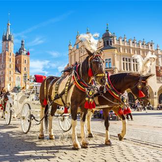 Paardenkoets op plein in Krakau, Polen