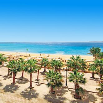 Palmbomen langs het strand in Sahl Hasheesh, Egypte