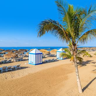 Uitzicht op El Duque strand met tropische palmbomen op Tenerife, Canarische Eilanden