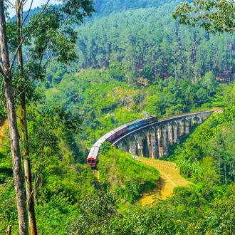 De trein in de natuur van Sri Lanka