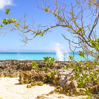 Natuur Cayo Santa Maria met blauwe zee op de achtergrond
