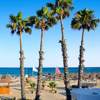 Strand met ligbedjes en palmbomen in de Golf van Hammamet