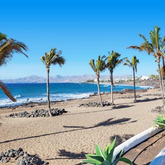 Strand met palmbomen en zee Puerto del Carmen