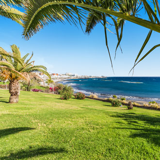 Groen gras met palmbomen en zee Costa Adeje