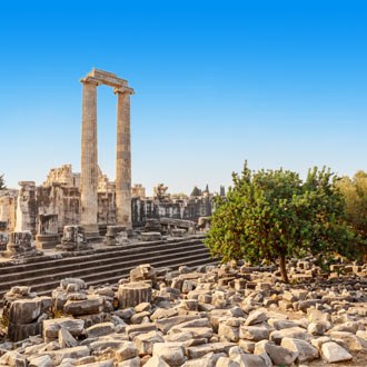 Apollo-tempel in Didim