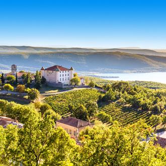 Wijngaarden met chateau in Frankrijk