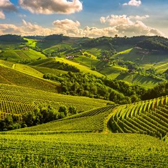 Wijnstreek de Langhe in Piemonte, Italië