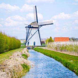 Windmolen omringd door weiland en water in Kasteren Gelderland