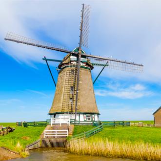 Windmolen in weiland met grazende koeien op Texel