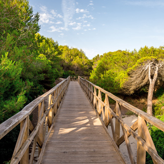 Houten loopbrug door het natuurreservaat in Can Picafort