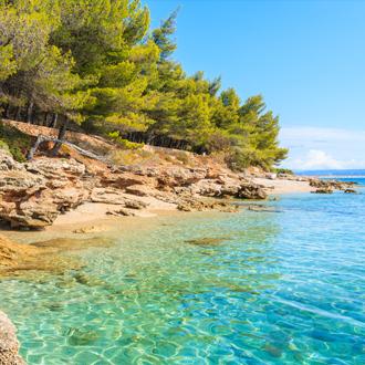 Bomen en blauw water op het eiland Brac in Kroatie
