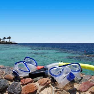 Vakantie Rode Zee