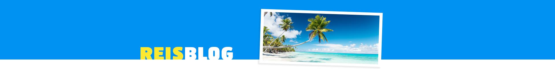 Prachtig wit zandstrand met wuivende palmboom op een tropische bestemming
