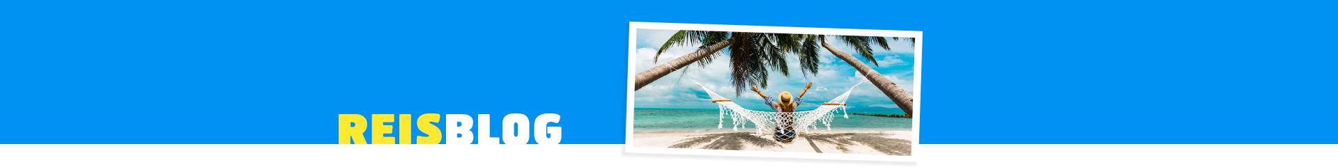 Vakantieganger in een hangmat onder palmbomen op een bucketlist bestemming