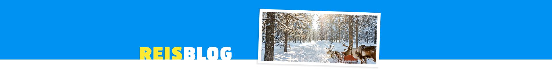 Prachtig landschap met sneeuw