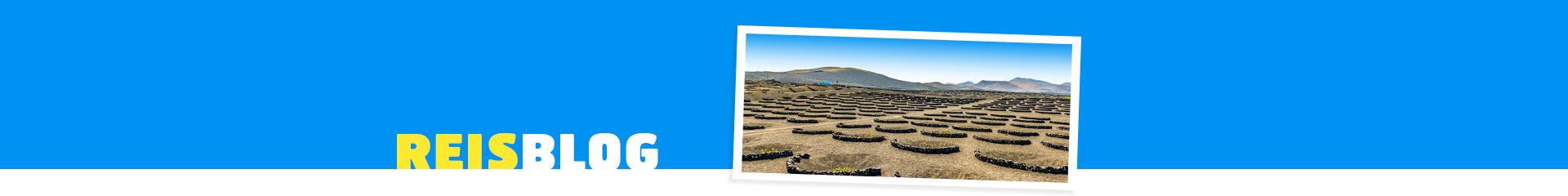 Natuur op het Canarische eiland Lanzarote in Spanje