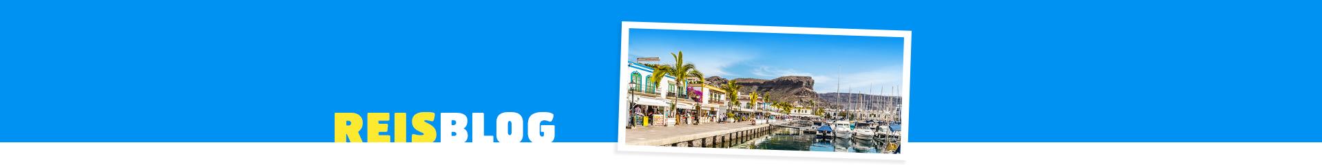 Uitzicht op de haven, bootjes en palmbomen in Puerto de Mogan